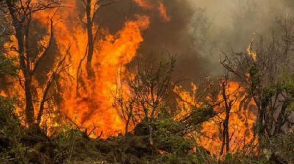 Se disparan incendios forestales en mayo