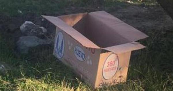 Abandonan a reci n nacida en caja de cart n en puebla el for Cajas de carton puebla