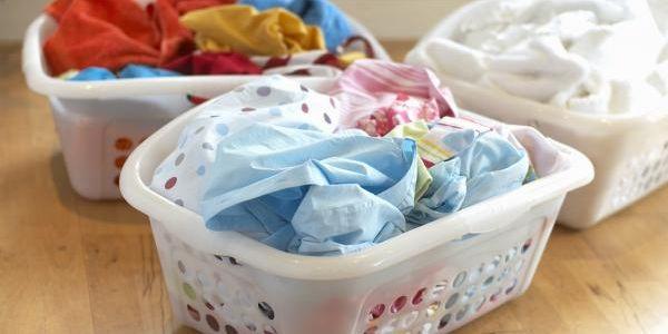 Alumnas del polit cnico y de la unam crean bacteria para - Lavar sin detergente ...